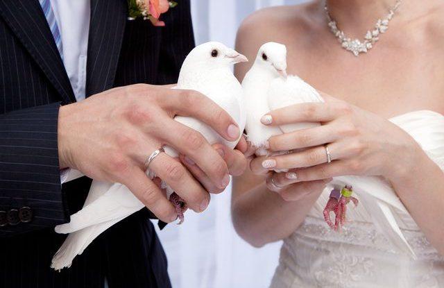 Svatební zábava