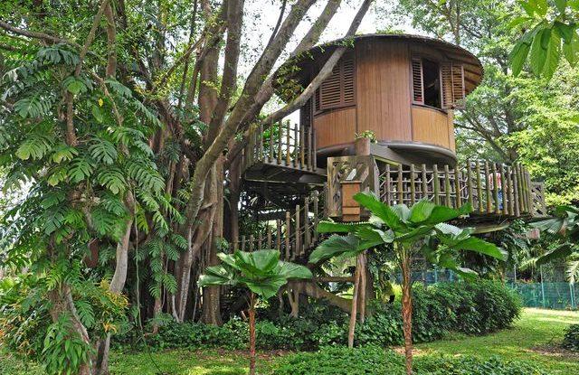 Netradiční líbánky, Dům na stromě